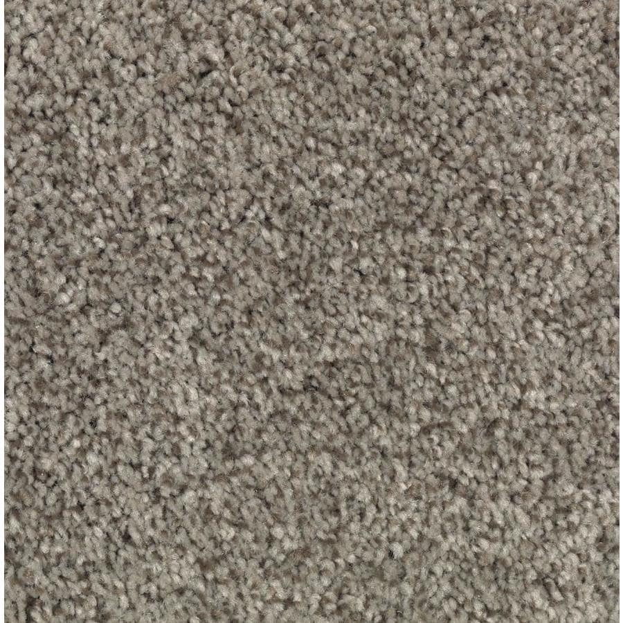 Shop stainmaster essentials tonal design perfect taupe for Taupe color carpet