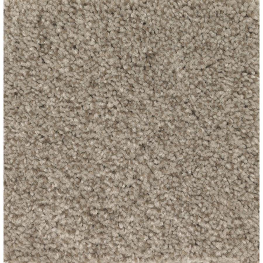 STAINMASTER Essentials Tonal Look Soothing Neutral Carpet Sample