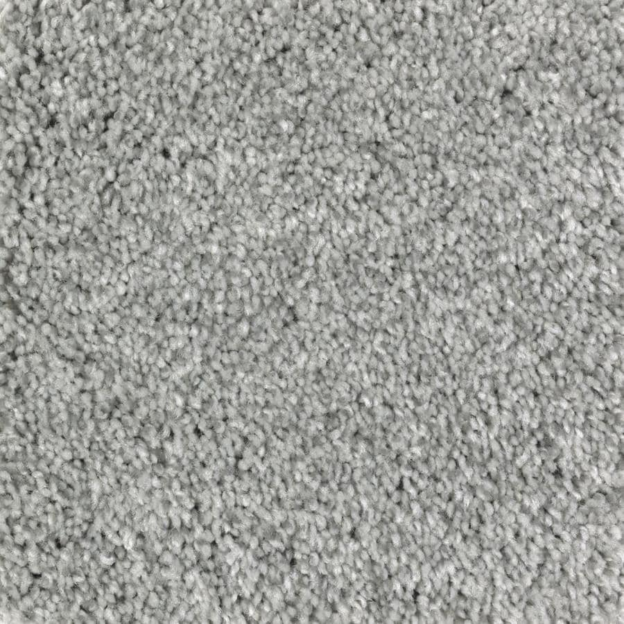 STAINMASTER Essentials Tonal Look Waterscape Plush Carpet Sample