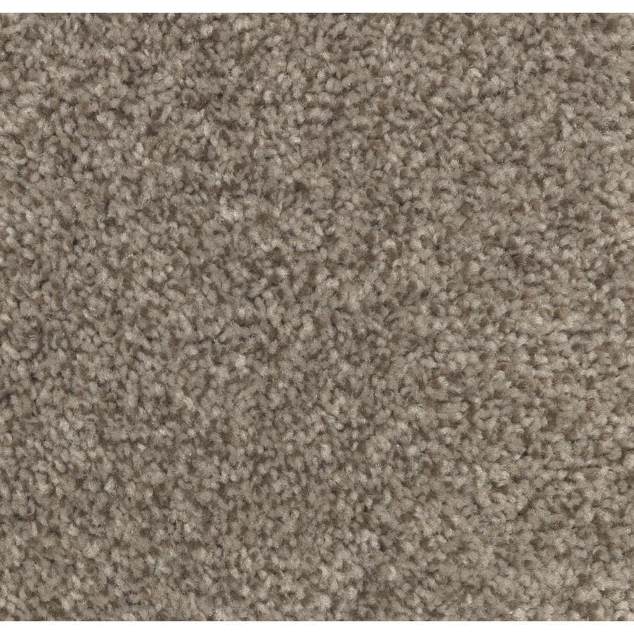 STAINMASTER Essentials Tonal Look Cedar Chest Carpet Sample