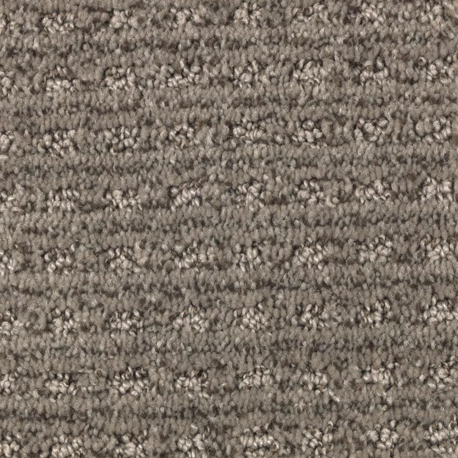 Shop stainmaster essentials fashion lane perfect taupe for Taupe color carpet