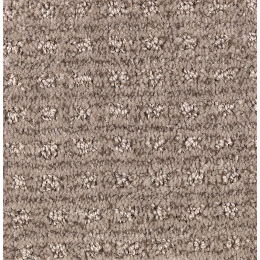 STAINMASTER Essentials Fashion Lane Soothing Neutral Carpet Sample