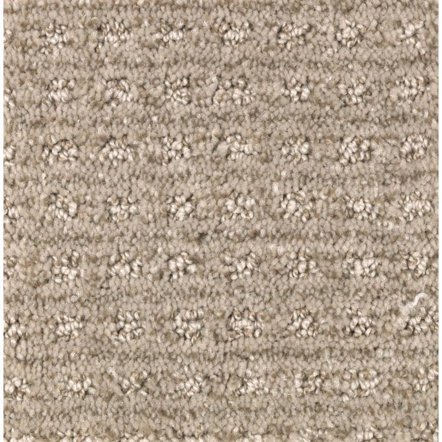 STAINMASTER Essentials Fashion Lane Ancestral Haze Carpet Sample