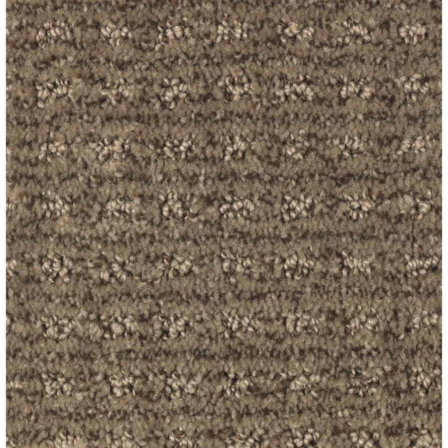 STAINMASTER Essentials Fashion Lane Cedar Chest Carpet Sample