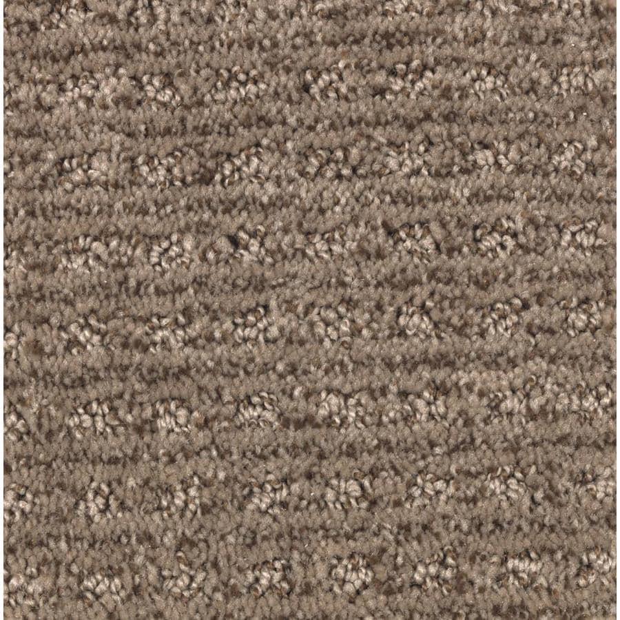 STAINMASTER Essentials Fashion Lane Pralines Carpet Sample