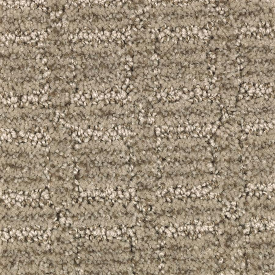 STAINMASTER Essentials Fashion Walk Soothing Neutral Carpet Sample