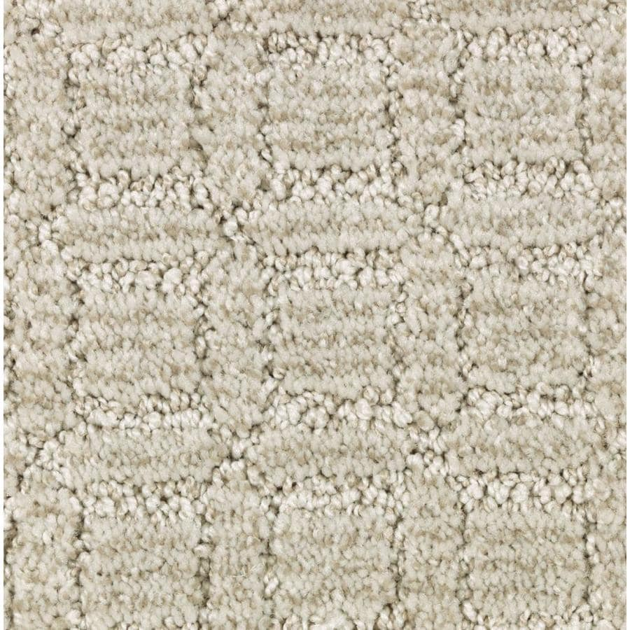 STAINMASTER Essentials Fashion Walk Cloudy Sunset Carpet Sample