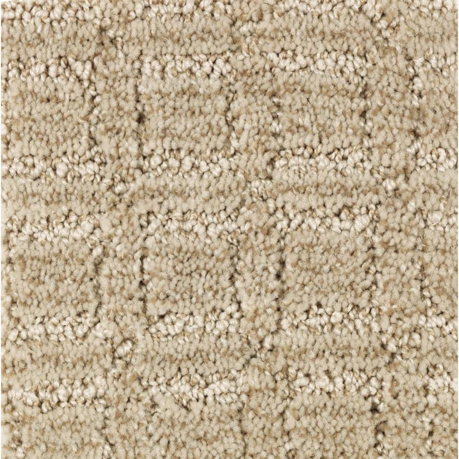 STAINMASTER Essentials Fashion Walk Belgian Linen Carpet Sample