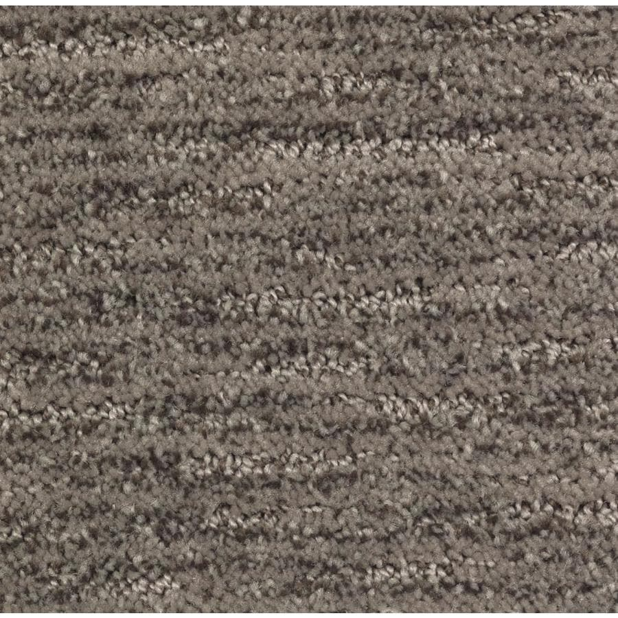 STAINMASTER Essentials Fashion Style Pralines Carpet Sample
