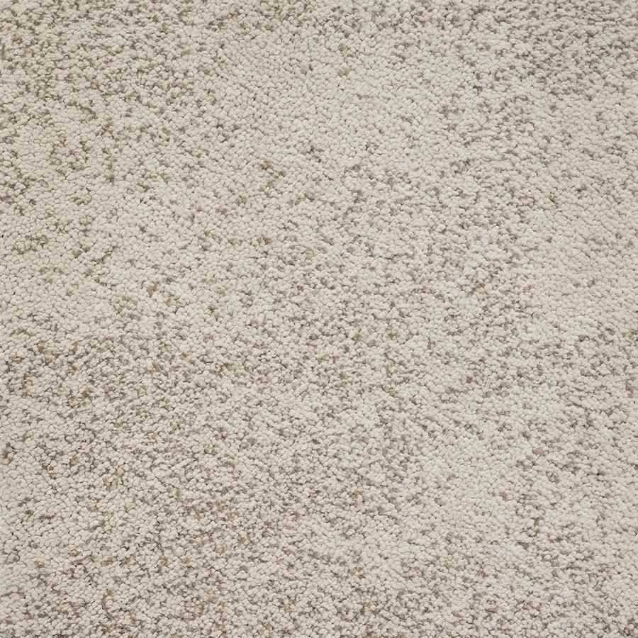 STAINMASTER TruSoft Kasbah Macrame Berber/Loop Carpet Sample