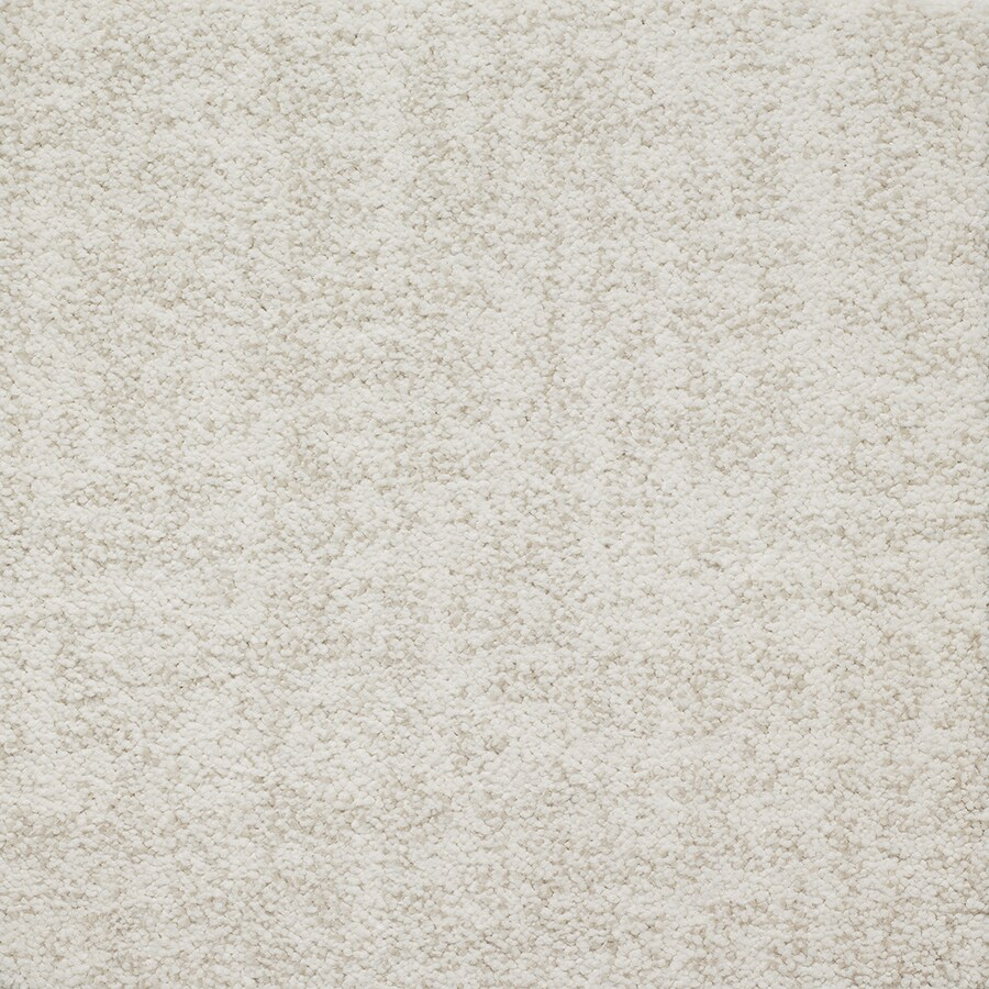 STAINMASTER TruSoft Espree Chantilly Berber/Loop Carpet Sample