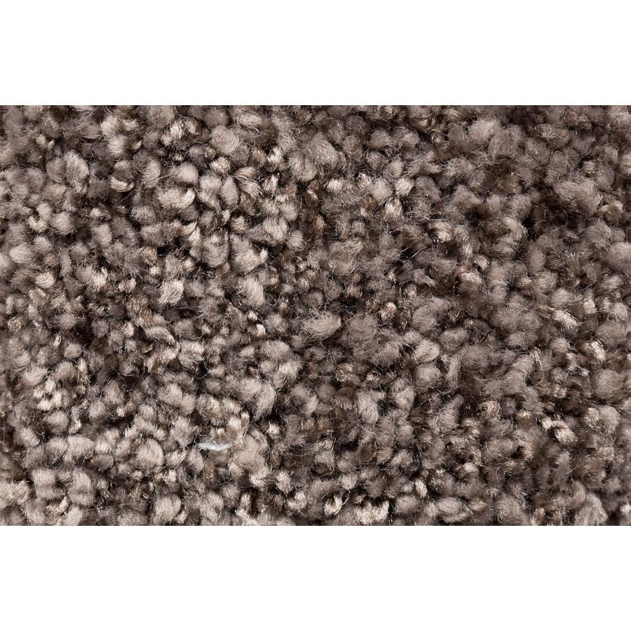 STAINMASTER TruSoft Footloose Foreign Affair Plush Carpet Sample