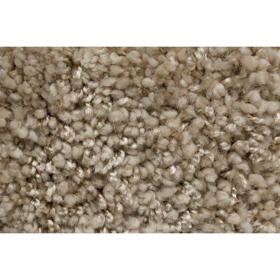 STAINMASTER TruSoft Footloose Redefined Plush Carpet Sample
