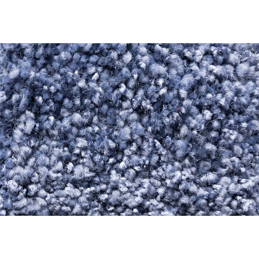 STAINMASTER TruSoft Footloose Royal Treatment Plush Carpet Sample