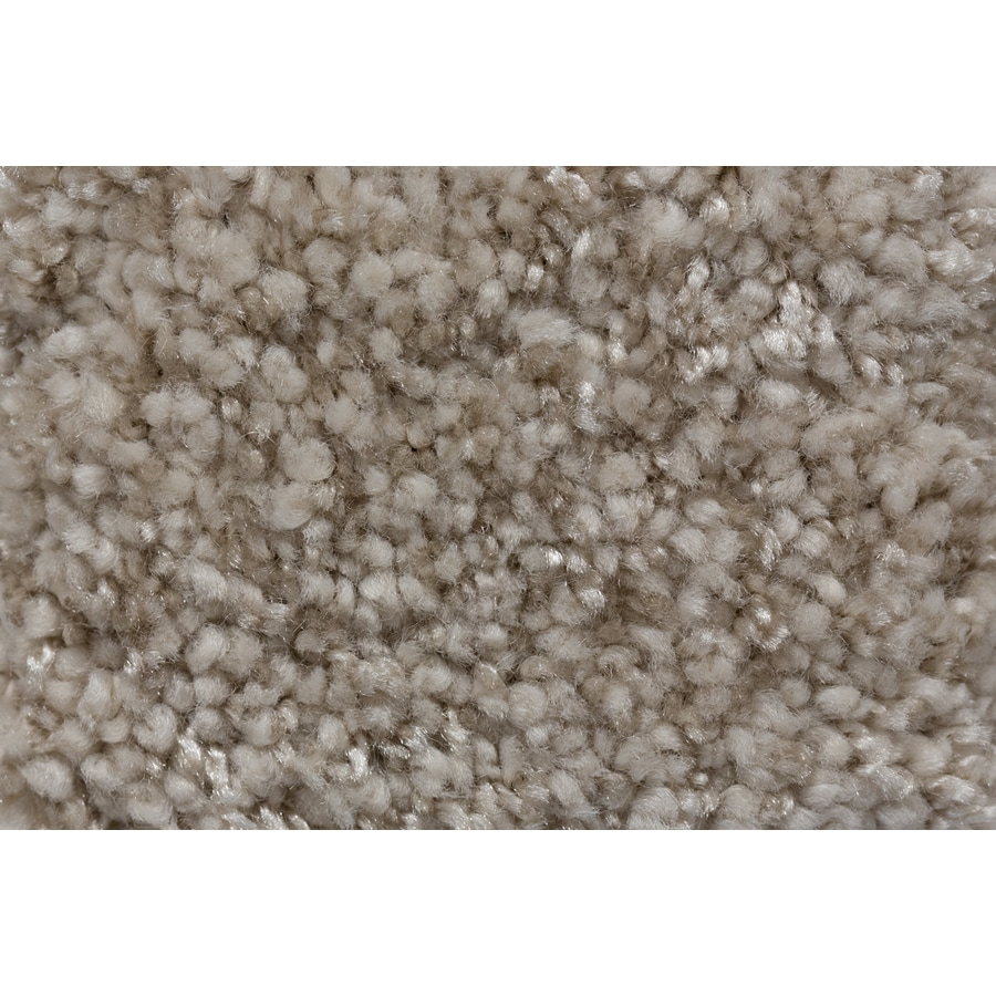 STAINMASTER TruSoft Footloose Soulfulness Plush Carpet Sample