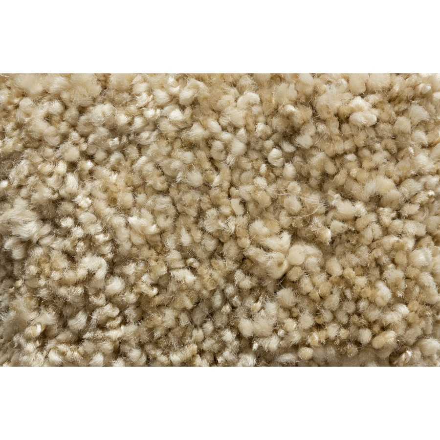 STAINMASTER TruSoft Footloose Tranquil Tones Plush Carpet Sample