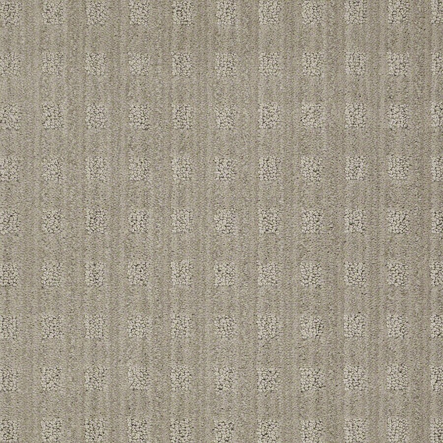 STAINMASTER Active Family Apricot Lane Fossil Carpet Sample