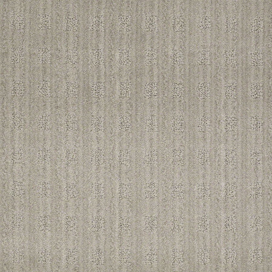 STAINMASTER Active Family Apricot Lane Pelican Carpet Sample