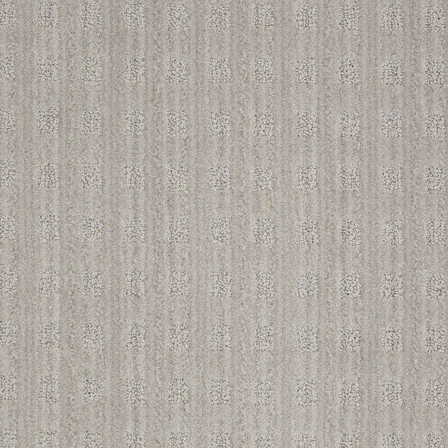 STAINMASTER Active Family Apricot Lane Ash Gray Carpet Sample