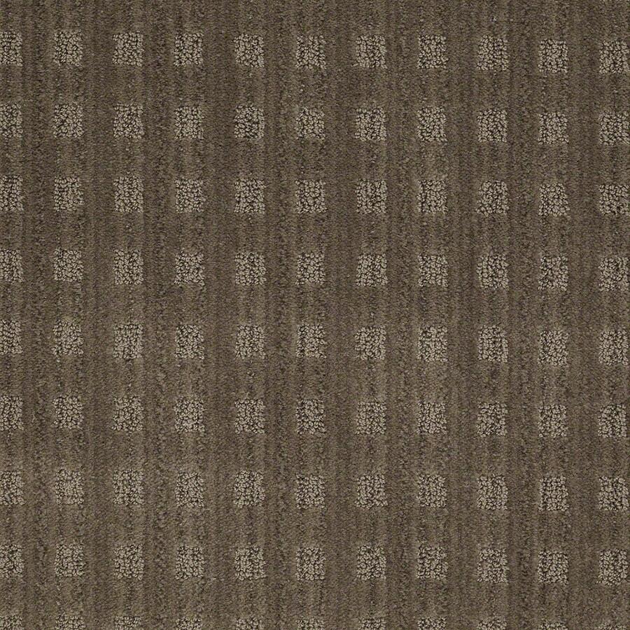 STAINMASTER Active Family Apricot Lane Urbana Carpet Sample