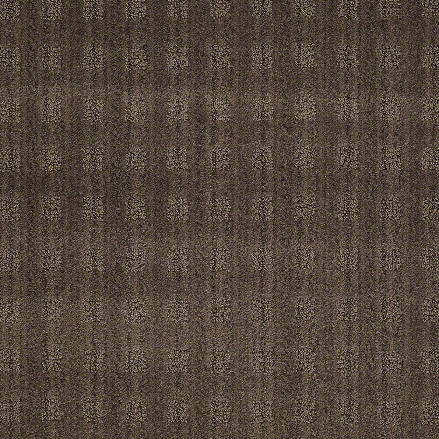STAINMASTER Active Family Apricot Lane Mineral Carpet Sample