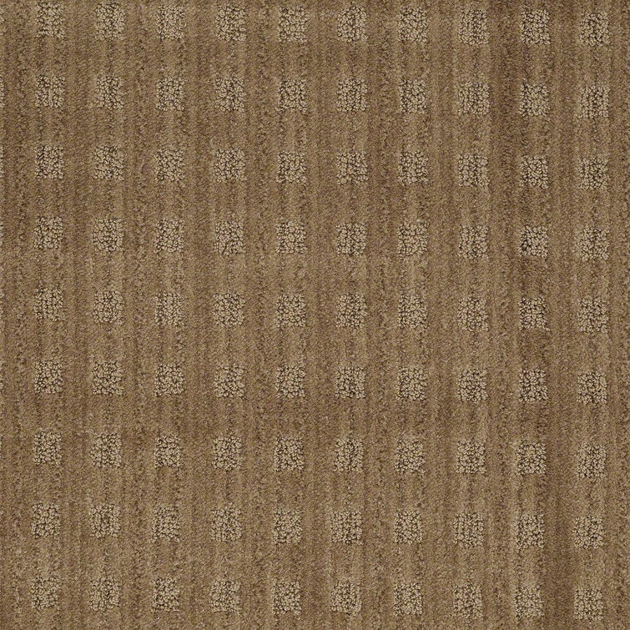 STAINMASTER Active Family Apricot Lane Starfish Carpet Sample