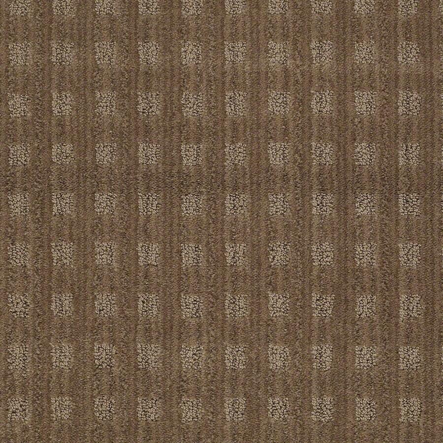 STAINMASTER Active Family Apricot Lane Gingersnap Carpet Sample