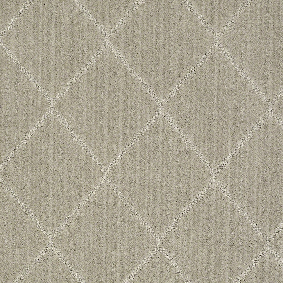 STAINMASTER Active Family Cross Creek Fossil Carpet Sample