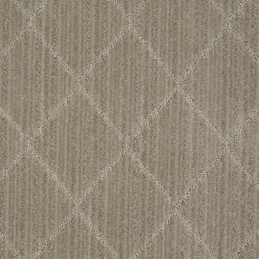 STAINMASTER Active Family Cross Creek Foggy Day Carpet Sample