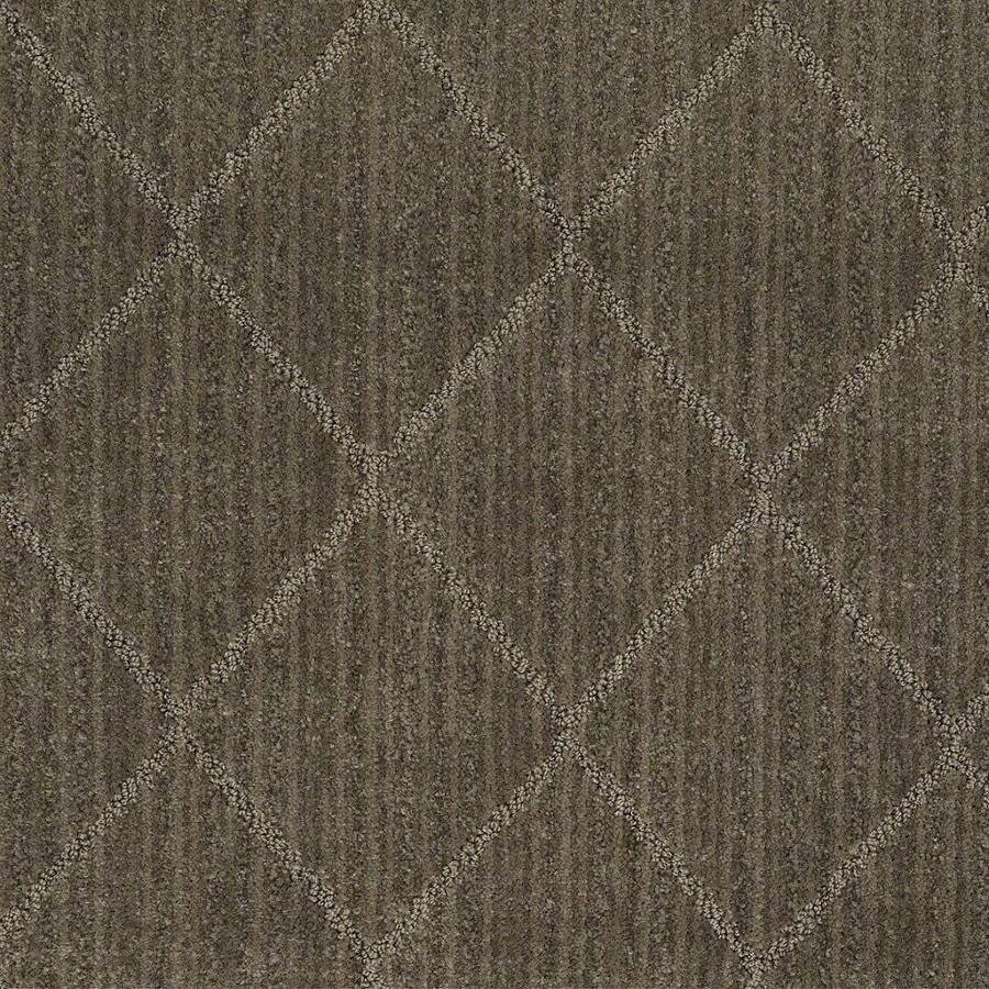 STAINMASTER Active Family Cross Creek Urbana Carpet Sample