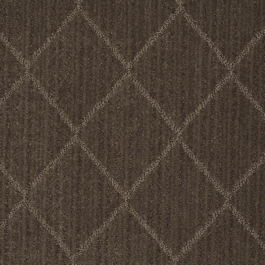 STAINMASTER Active Family Cross Creek Mineral Carpet Sample
