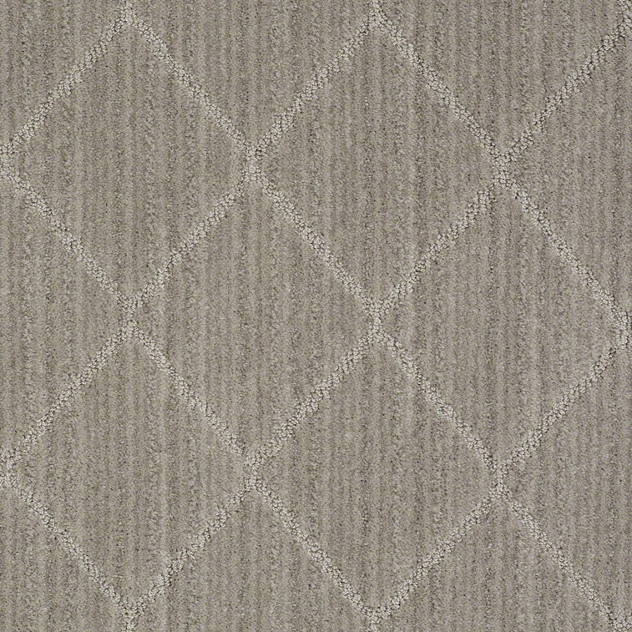 STAINMASTER Active Family Cross Creek Cityscape Carpet Sample