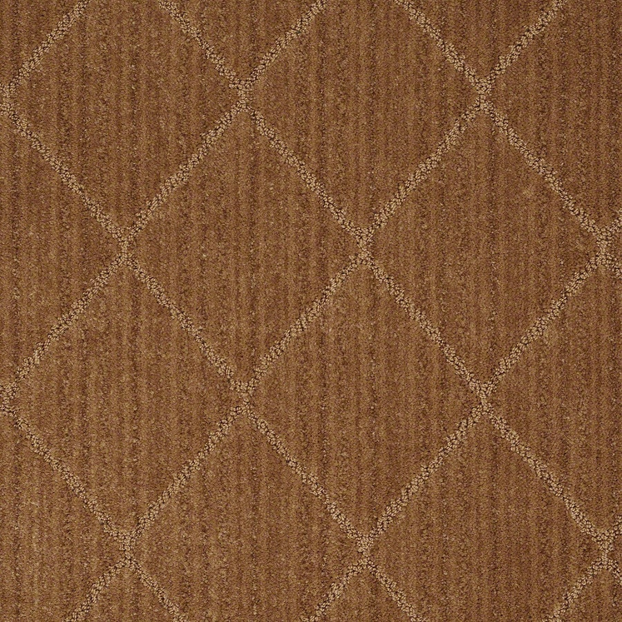 STAINMASTER Active Family Cross Creek Melted Copper Carpet Sample
