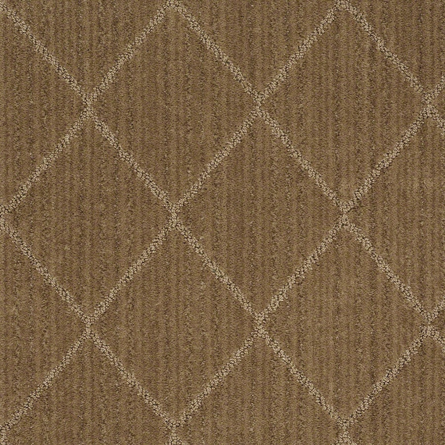 STAINMASTER Active Family Cross Creek Starfish Carpet Sample