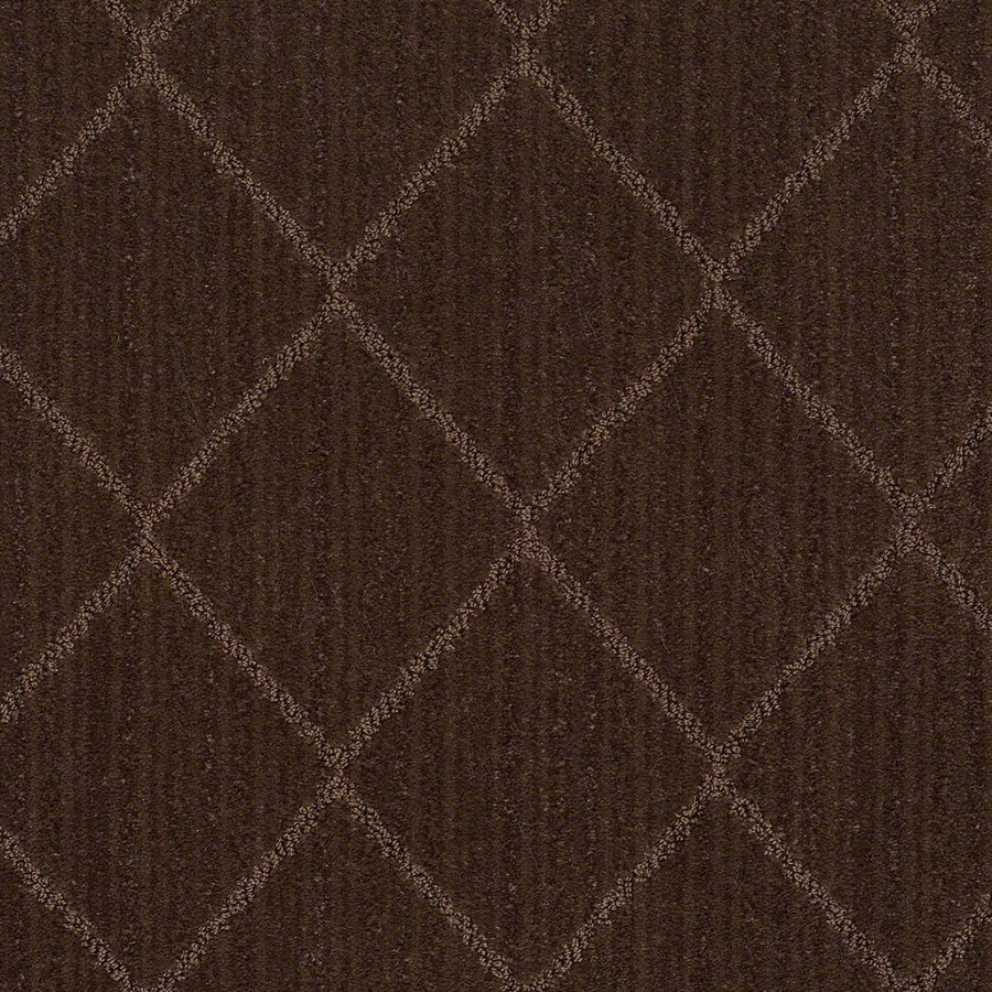 STAINMASTER Active Family Cross Creek Catskill Brown Carpet Sample