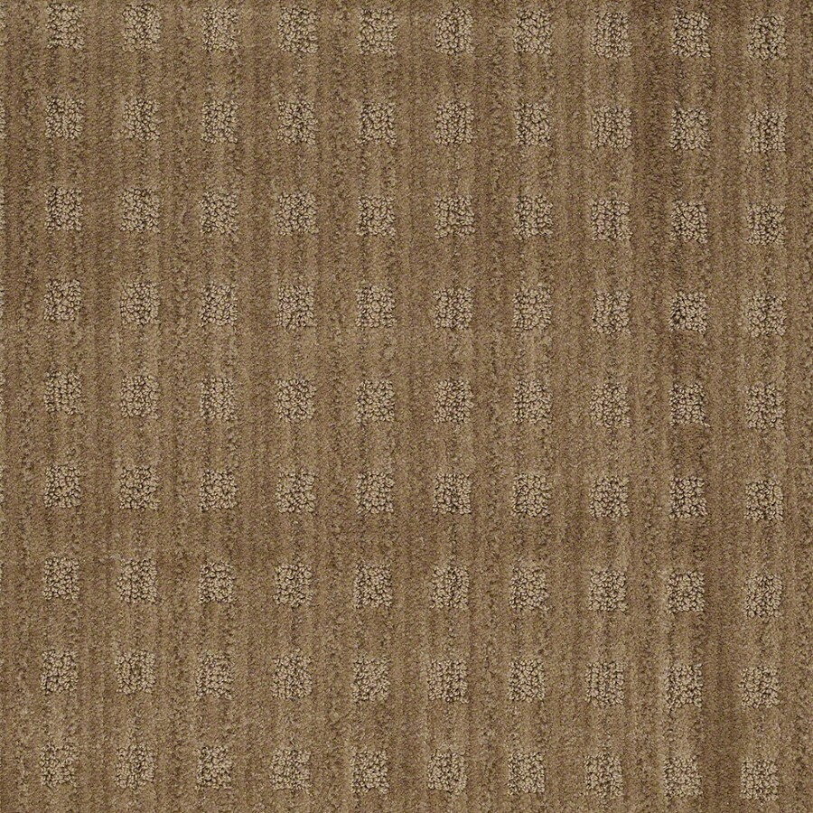 STAINMASTER Active Family Cross Creek Gingersnap Carpet Sample