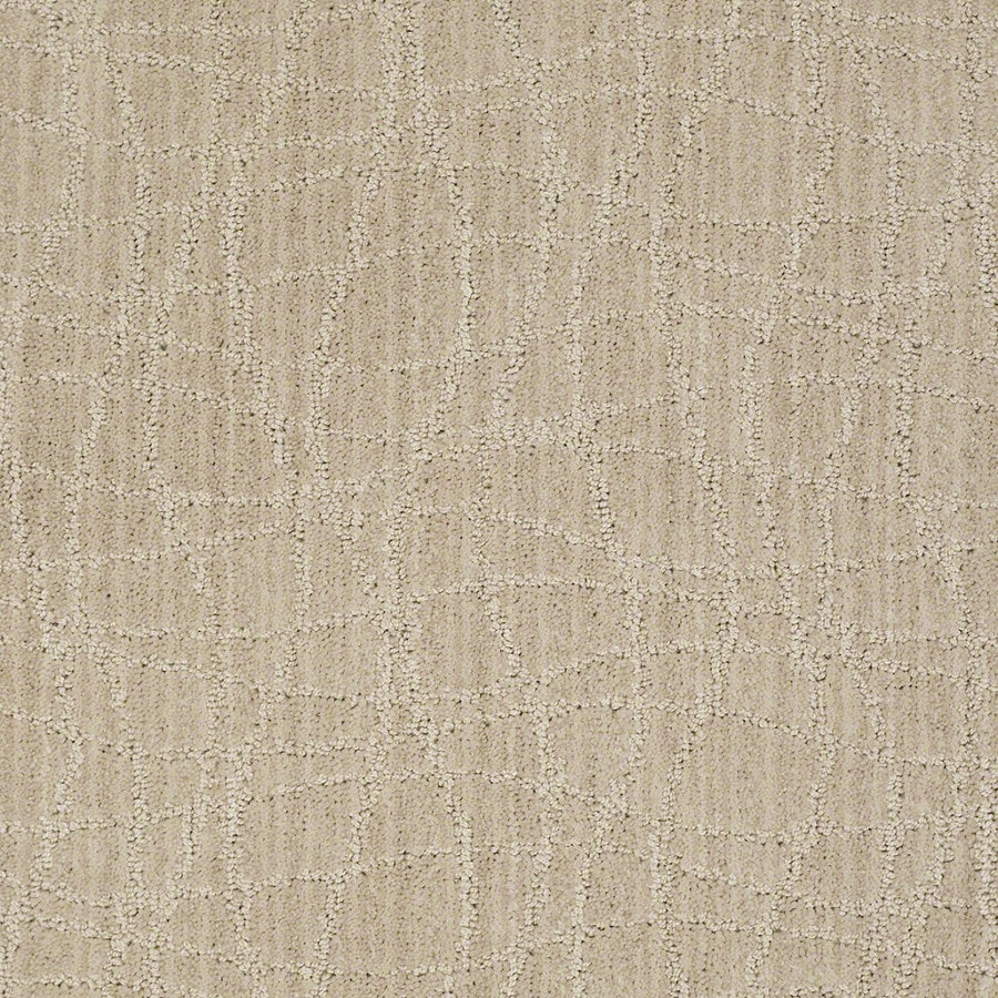 STAINMASTER Active Family Holly Springs Birch Carpet Sample