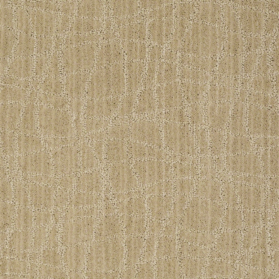 STAINMASTER Active Family Holly Springs Supernova Carpet Sample