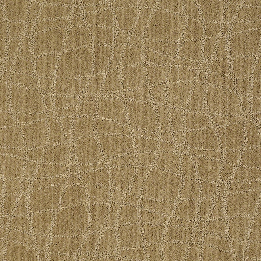 STAINMASTER Active Family Holly Springs Honey Grove Carpet Sample