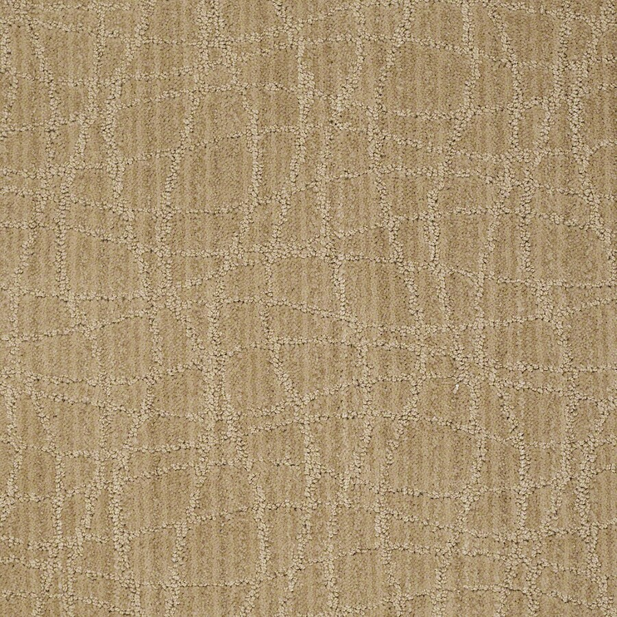 STAINMASTER Active Family Holly Springs Crushed Cashew Carpet Sample