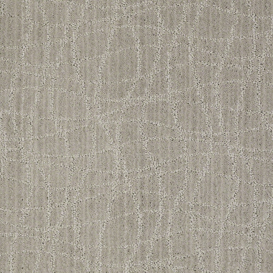 STAINMASTER Active Family Holly Springs Ash Gray Carpet Sample