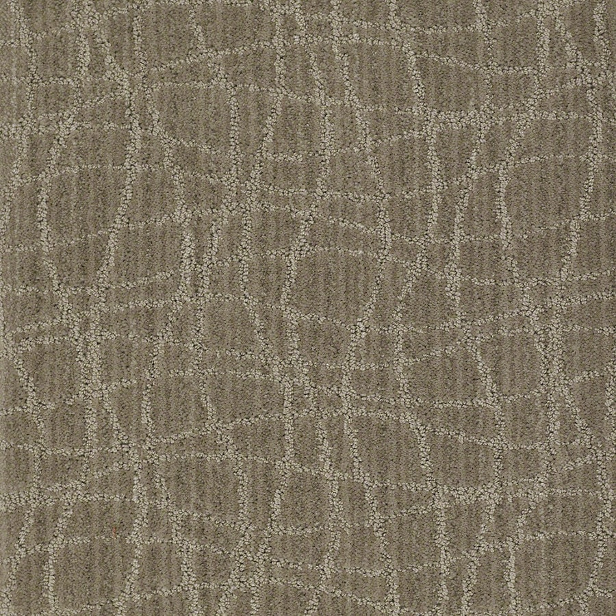 STAINMASTER Active Family Holly Springs Foggy Day Carpet Sample