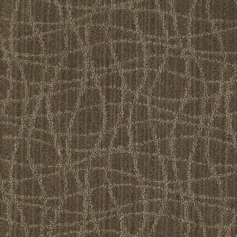 STAINMASTER Active Family Holly Springs Urbana Berber/Loop Carpet Sample