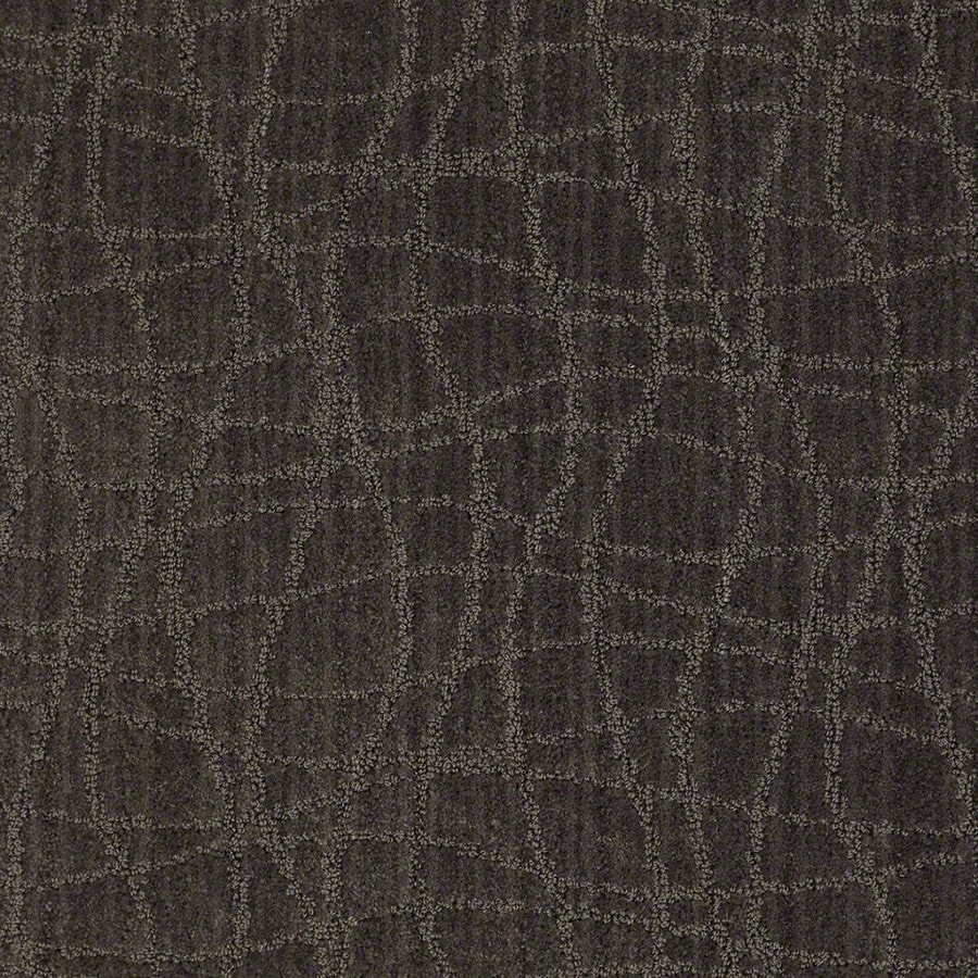 STAINMASTER Active Family Holly Springs Lava Carpet Sample