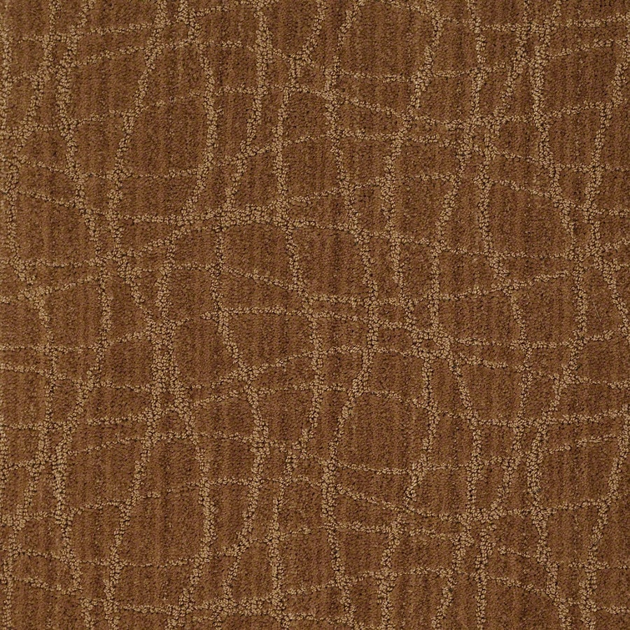 STAINMASTER Active Family Holly Springs Melted Copper Carpet Sample