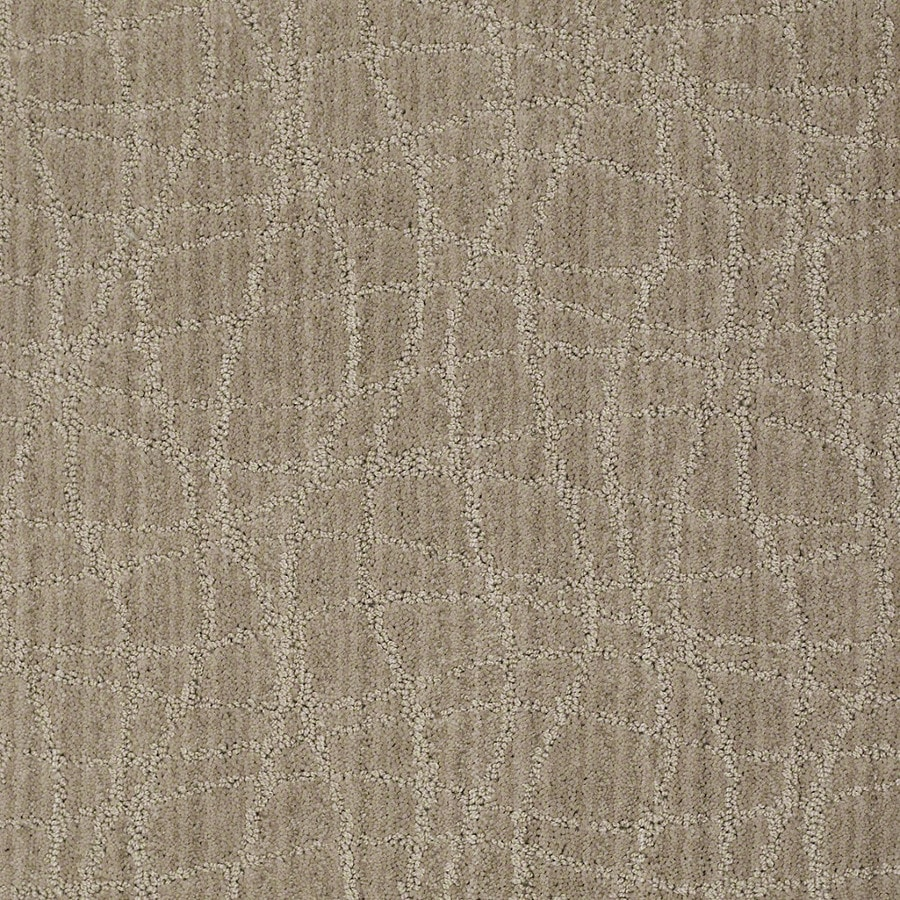 STAINMASTER Active Family Holly Springs Miner's Dust Carpet Sample