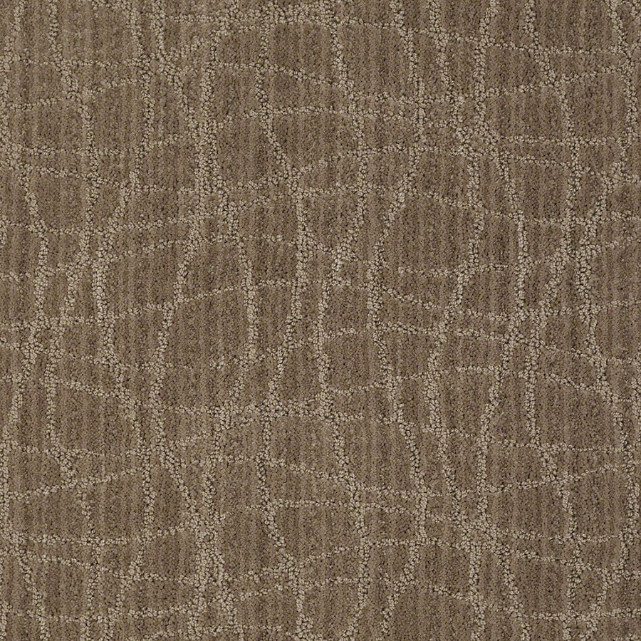 STAINMASTER Active Family Holly Springs Mocha Blast Carpet Sample