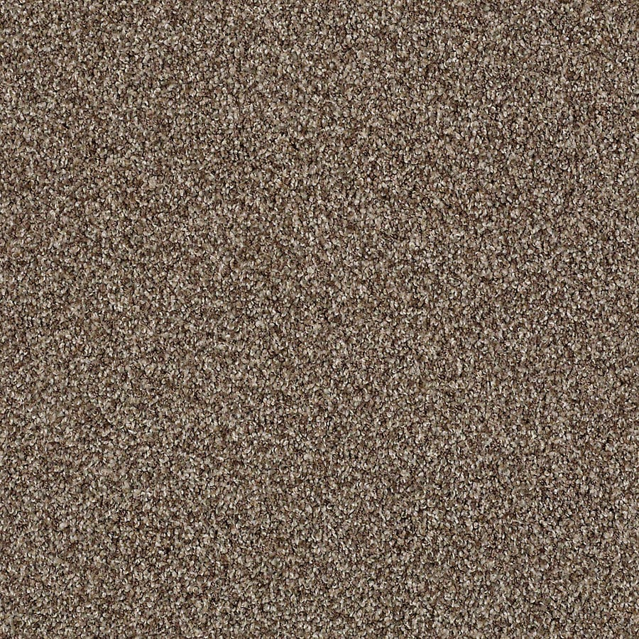 STAINMASTER Active Family With Lifeguard Waterville I Nature Trail Carpet Sample