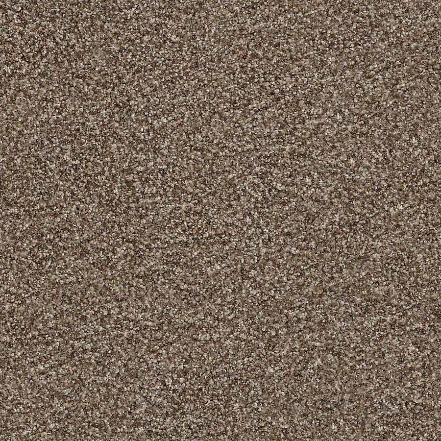 STAINMASTER Active Family With Lifeguard Waterville II Nature Trail Carpet Sample