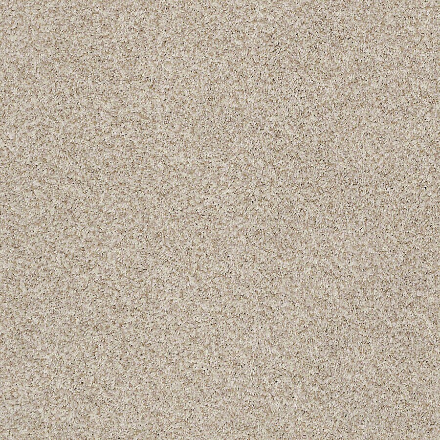 STAINMASTER LiveWell Robust I Flawless Carpet Sample